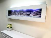 Wall Aquarium White Glass Panoramic Plasma Fish Tank 6ft