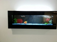 Black Glass Wall Mount Panoramic Plasma Fish Tank Aquarium 3ft