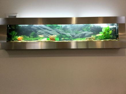 stainless-steel-aquarium